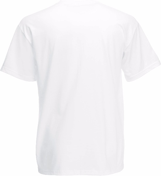 Tee shirt T-shirt Homme Col V Valueweight (61-066-0) Sc22v 2